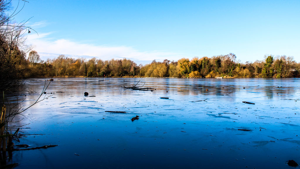 A shot of a frozen UEA Broad in winter.